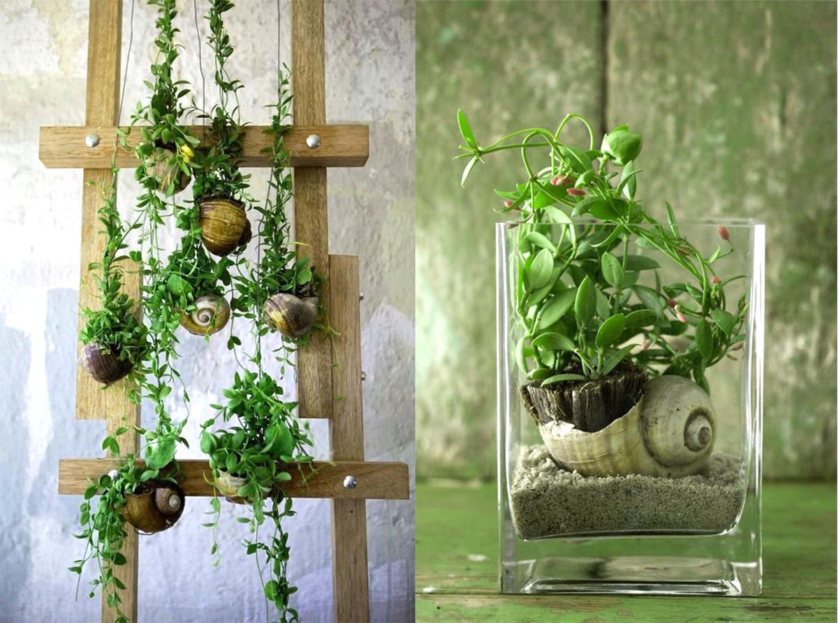 รูปบทความ เดฟกระเป๋าพืชแขวนเลี้ยงง่าย ตอบโจทย์ชาวคอนโด