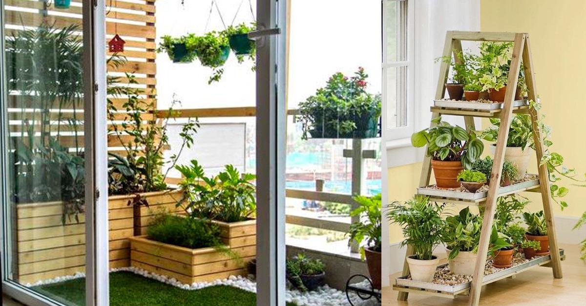 รูปบทความ รวมอุปกรณ์จัดสวนในคอนโดจากโฮมโปร