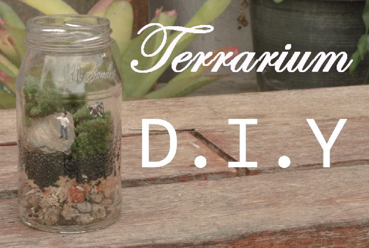 Terrarium DIY 'จัดสวนขวดแก้ว' แบบปิด ง่ายๆ ด้วยตัวเอง