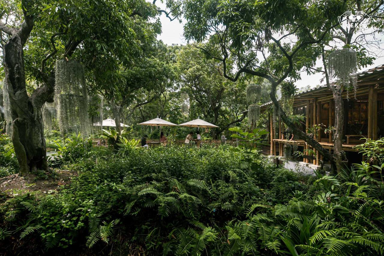 รีวิว-Natura-Garden-Cafe-บางขุนเทียน